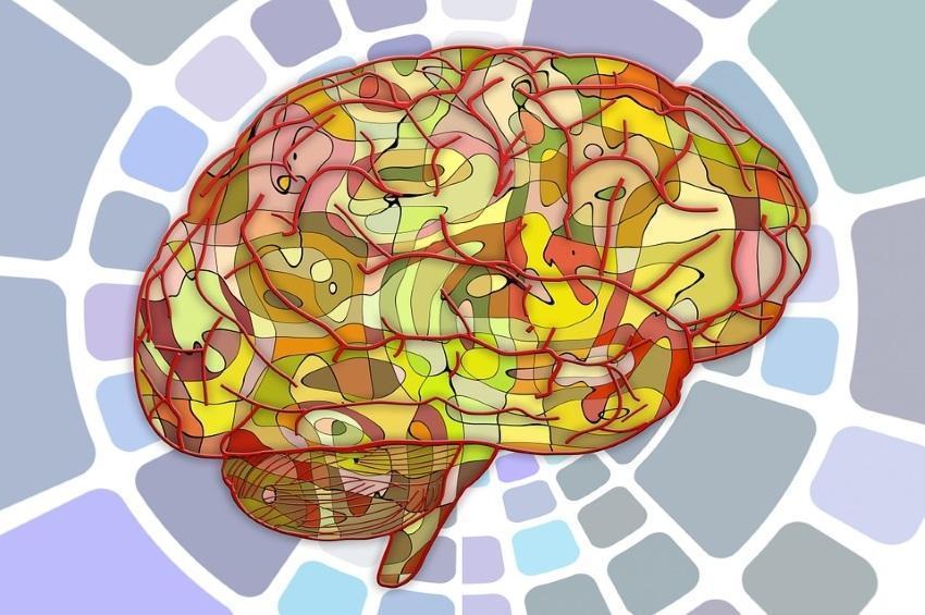 ¡10 Elementos Psicológicos que debe tener en cuenta al redactar su Anuncio!